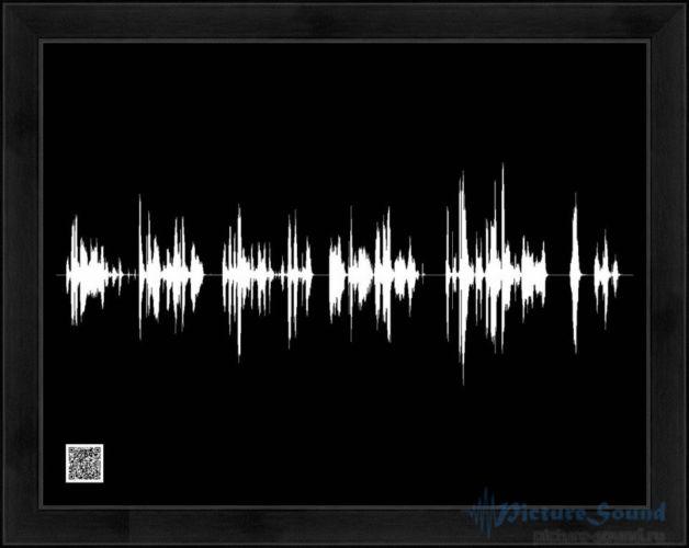 Голосовая картина (16)