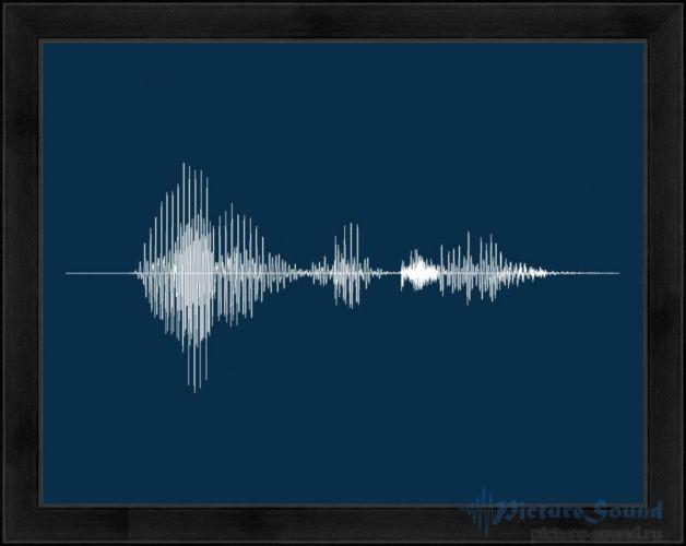 Голосовая картина (17)