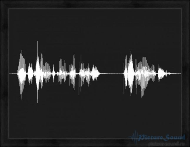 Голосовая картина (18)