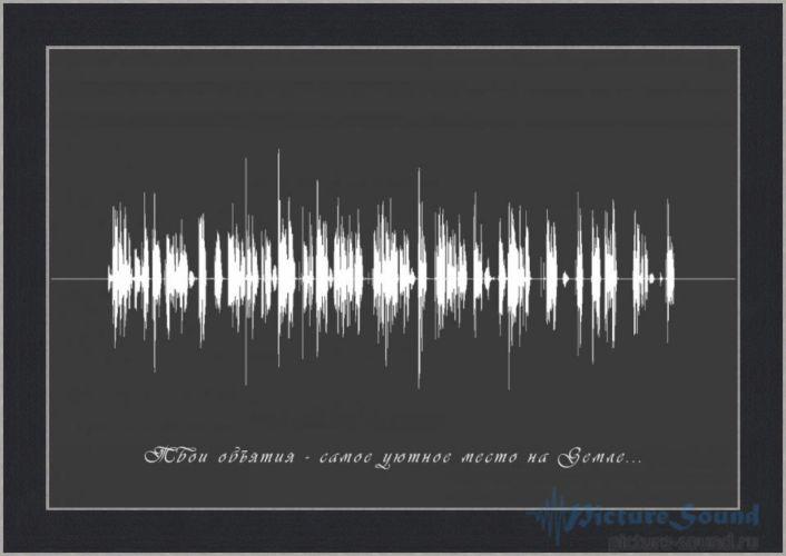Голосовая картина (46)