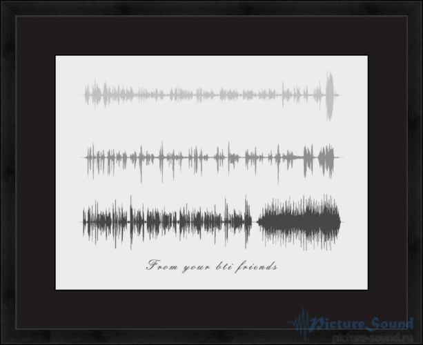 Голосовая картина PictureSound (1)