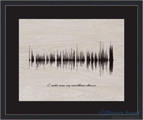 Голосовая картина PictureSound (13)