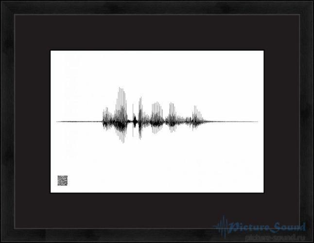 Голосовая картина PictureSound (2)