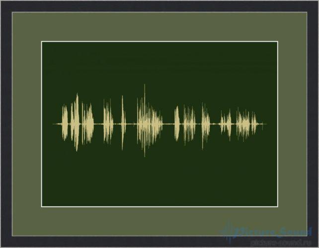 Голосовая картина PictureSound (4)
