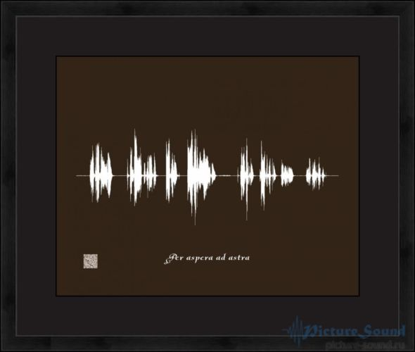 Голосовая картина PictureSound (5)
