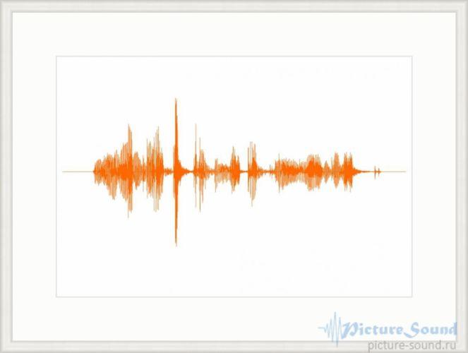 Картина голоса (19)
