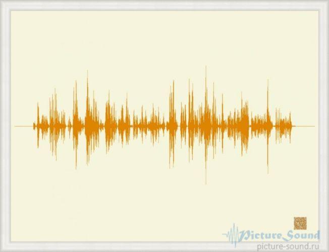 Картина голоса PictureSound (1)