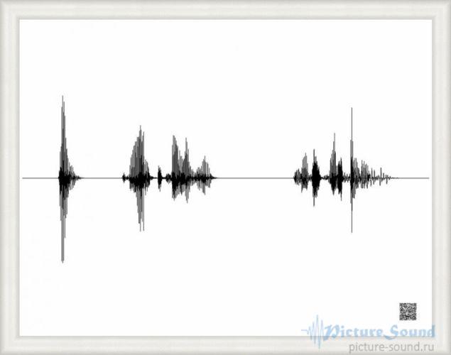 Картина голоса PictureSound (103)