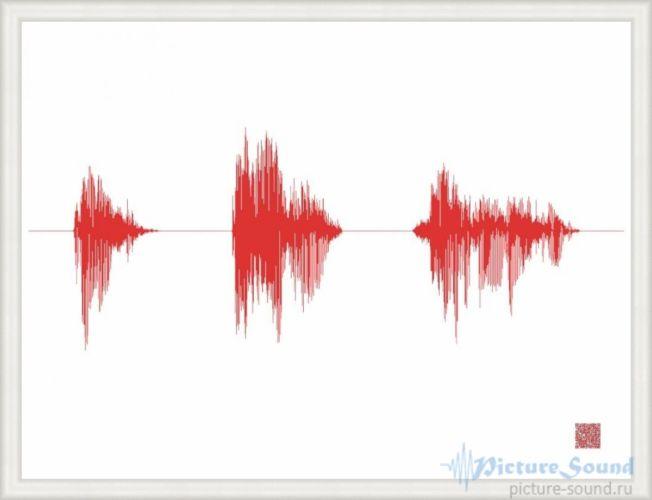 Картина голоса PictureSound (133)
