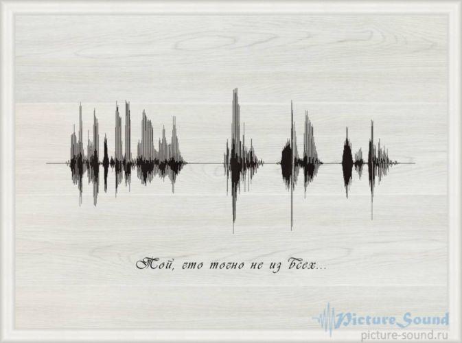 Картина голоса PictureSound (134)