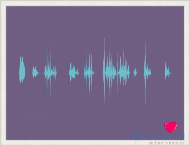 Картина голоса PictureSound (16)