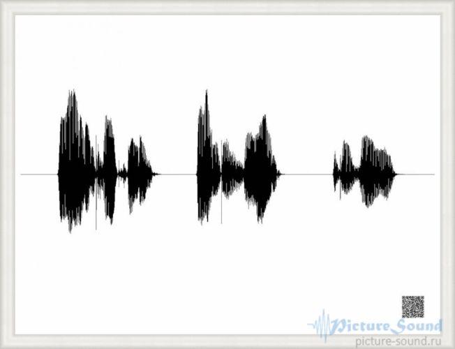 Картина голоса PictureSound (17)