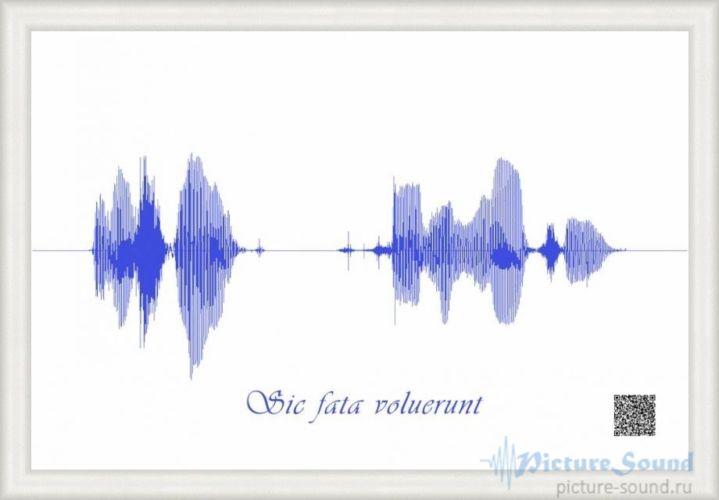 Картина голоса PictureSound (21)