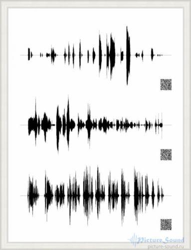 Картина голоса PictureSound (31)