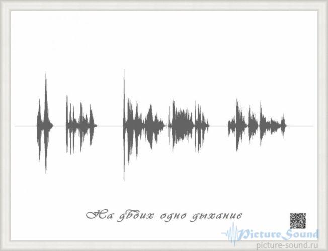 Картина голоса PictureSound (33)