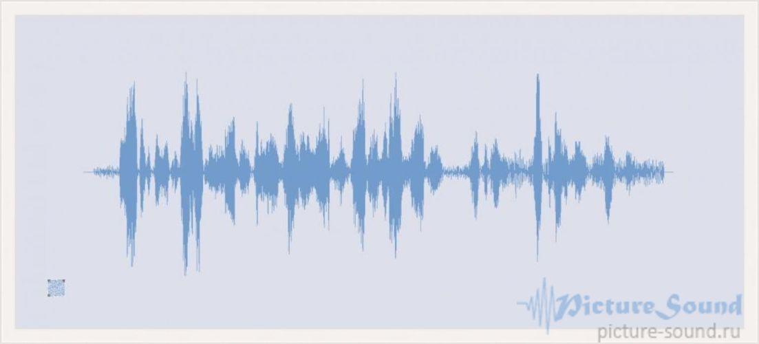Картина голоса PictureSound (52)