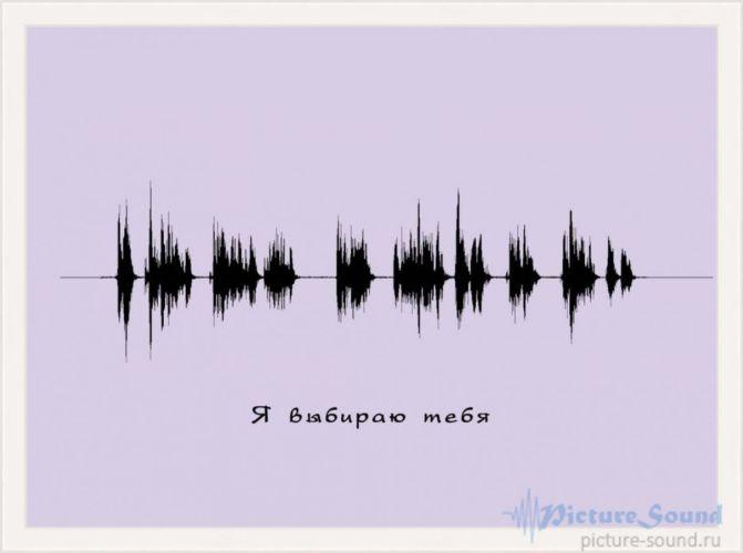 Картина голоса PictureSound (56)
