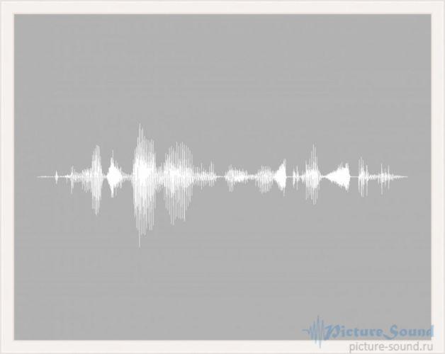 Картина голоса PictureSound (60)