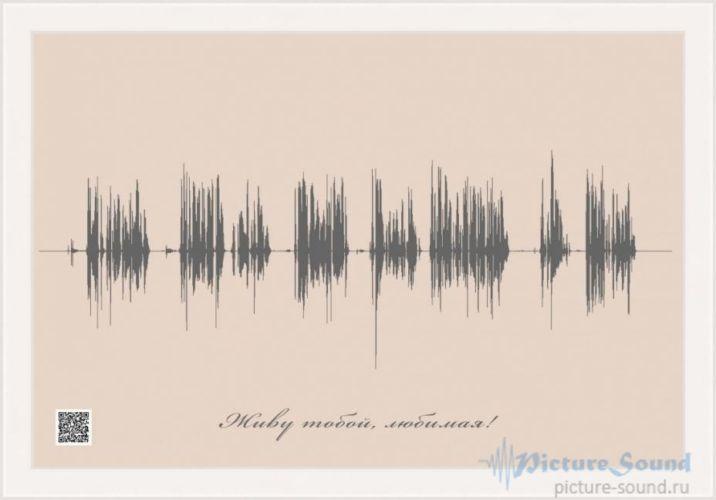 Картина голоса PictureSound (62)