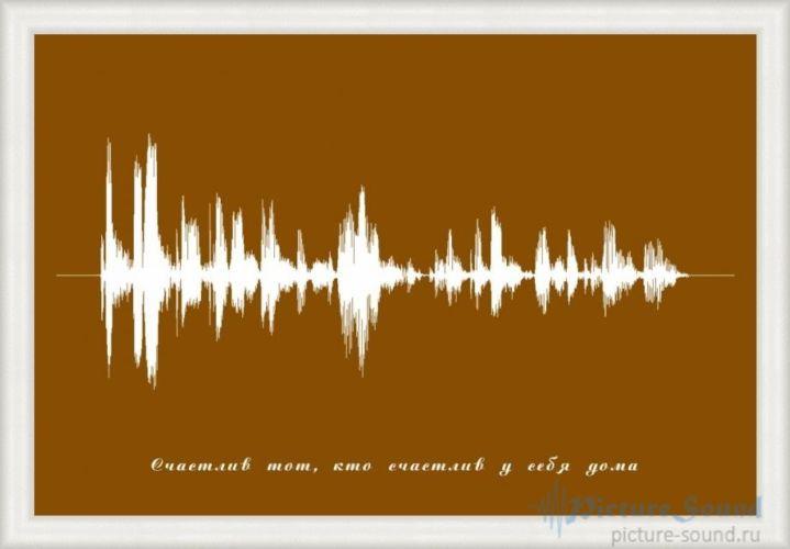 Картина голоса PictureSound (69)