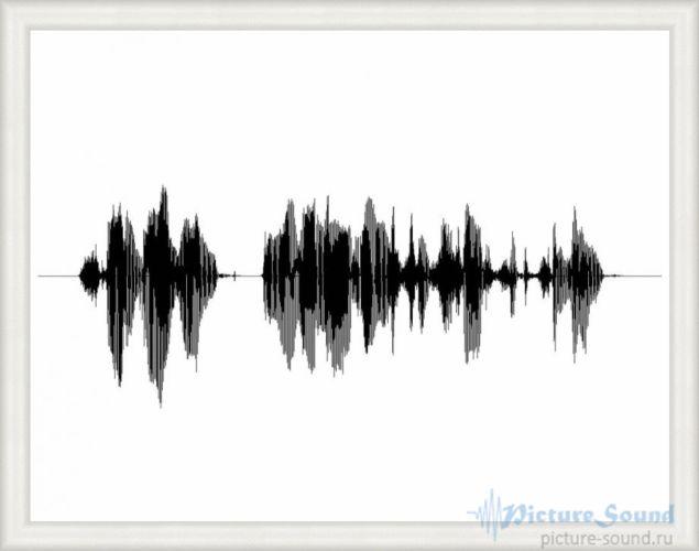 Картина голоса PictureSound (72)