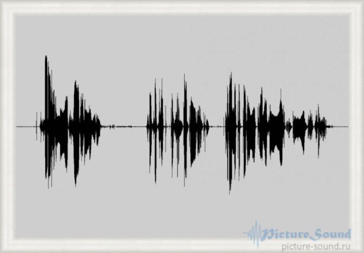 Картина голоса PictureSound (74)