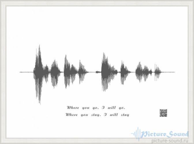 Картина голоса PictureSound (76)