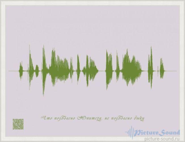 Картина голоса PictureSound (78)
