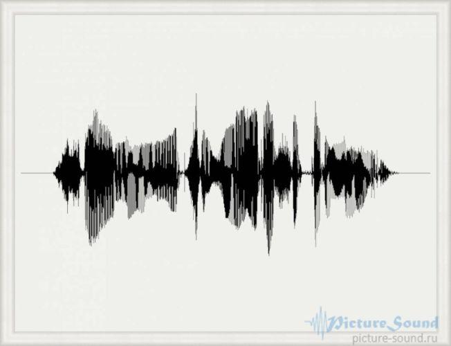 Картина голоса PictureSound (8)