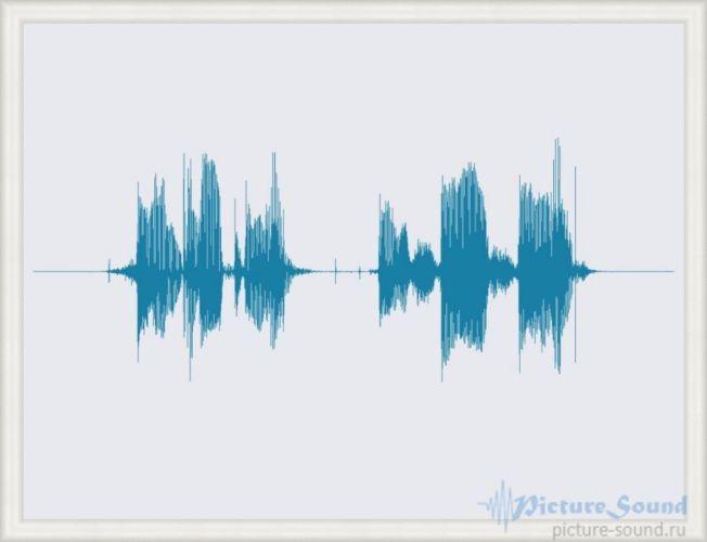 Картина голоса PictureSound (86)