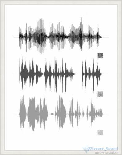 Картина голоса PictureSound (88)